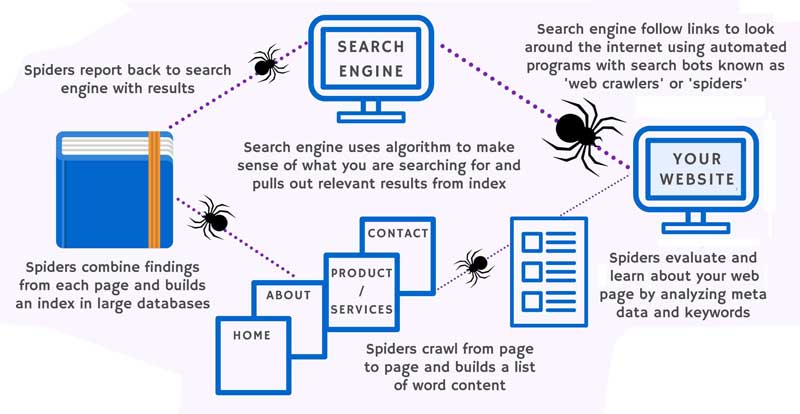 how search engine web crawlers work