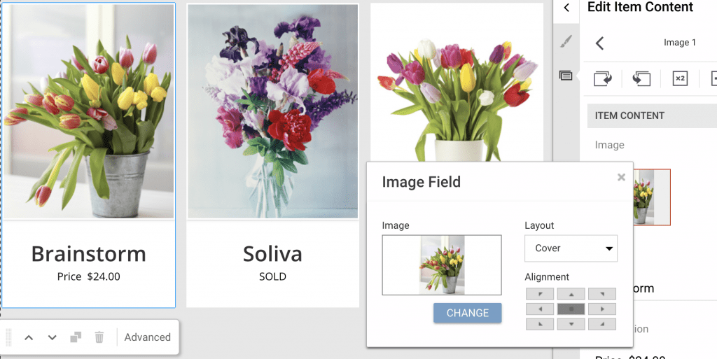 replace images in default theme with your own in gator website builder