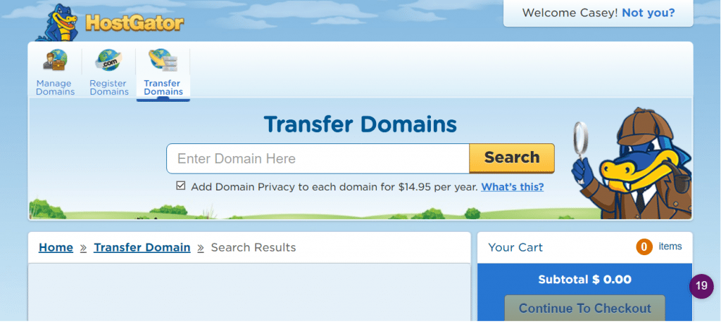 transfer domains page